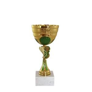 CUPA RECUNOSTINTEI 2016